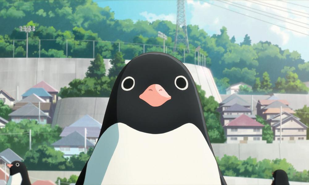 Animation Movie Wallpaper Penguin Highway Simbiosis Carnal Take Fantasia