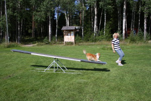 Foto: Anita Axelsson. För att få bra, snabba och säkra kontaktfält är det smart att ha en bra målbild med träningen.
