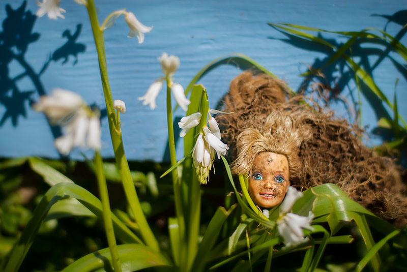 A dirty Barbie doll head, recently dug up from the garden is displayed in front of a bright blue house, nestled in green grass and white flowers.