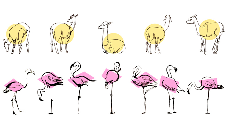 Anna Lubinski Illustration Carnets De Croquis
