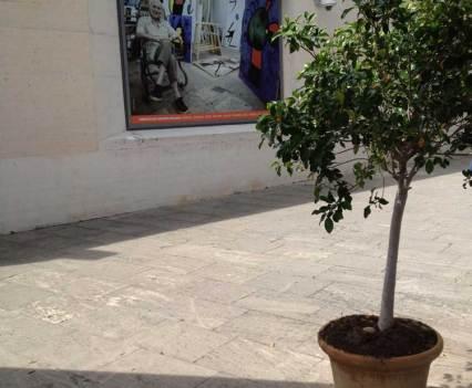Fundacio_Pilar_y_Joan_Miró_ Palma_Mallorca_Anna_Szermanski_Stiftung_Atelier_Surreallismus_Skulptur_Park_Ausstellung_zeitgenössische_Kunst_1