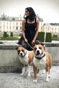 Dogs-pet portrait -Ann Charlotte Photography@2016-3