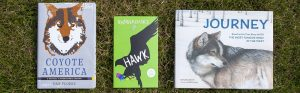Three nature books, Coyote America, Hawk, and Journey, atop lawn