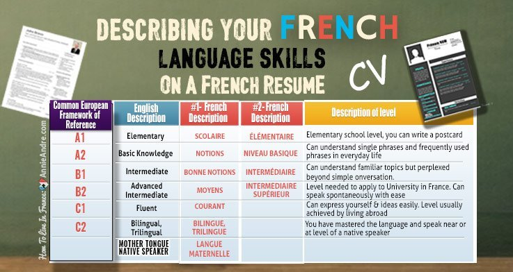 cv niveau langues notions bases
