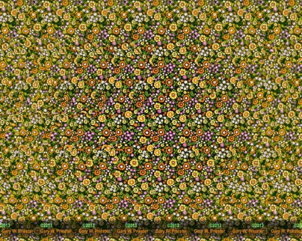 3d Stereograms Wallpaper Butterfly Stereogram By Gary Priester An Optical Illusion
