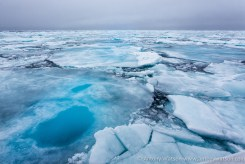 Jewels_Of_The_Arctic_Photography_Expedition--4
