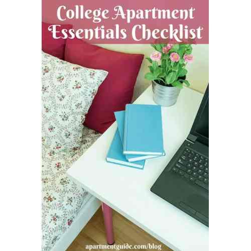 Medium Crop Of Minimalist Student Apartment