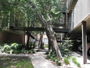 4848-pin-oak-park-8
