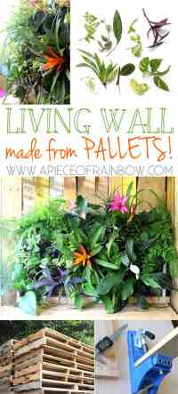 DIY Tropical Pallet Living Wall - A Piece Of Rainbow