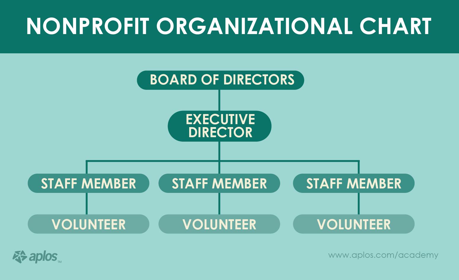 Non Profit Org Chart Sample Yerse