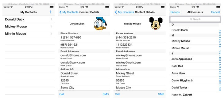 How To Import Contacts Using Address Book API iOS Programming