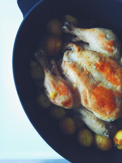 roast-chicken-appeasing-a-food-geek-15