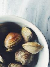 appeasing-a-food-geek-clam-pasta-1