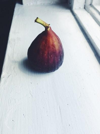 appeasing-a-food-geek-fig-plum-compote-milkshake-2