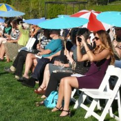 Fascinated crowd with blue parasols watches Cook-off Competition