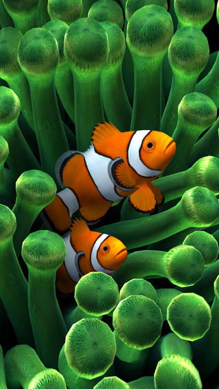 Iphone 5 Clown Fish Wallpaper Sim Aquarium 3d App Review Apppicker