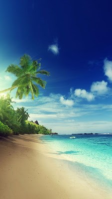 Beach Live Wallpaper APK Download for Android