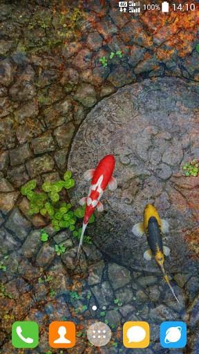 3d Koi Pond Live Wallpaper Apk Water Garden Live Wallpaper Apk Download For Android