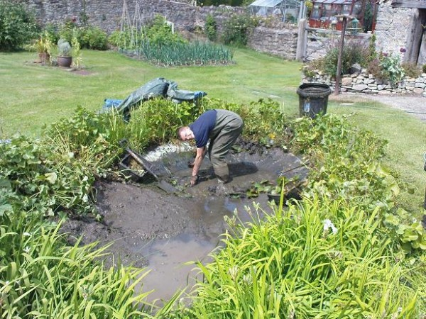 Pond cleaning pond servicing pond maintenance bristol for Natural pond maintenance