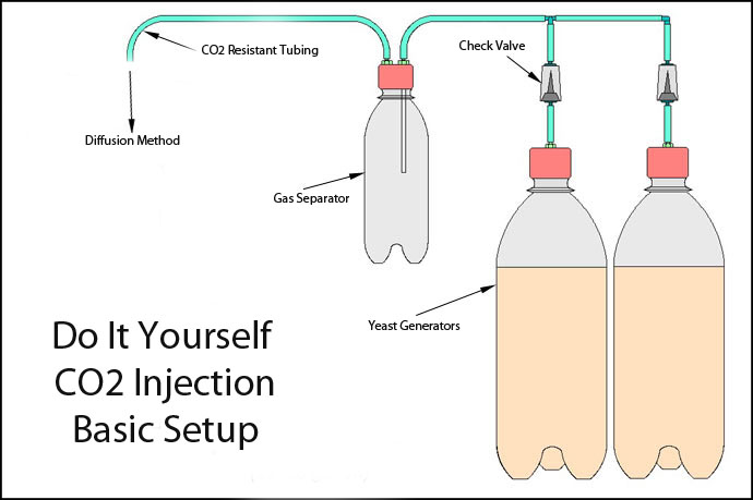 Beginner\u0027s Guide to CO2 Injection in the Planted Tank - Aquarium Advice