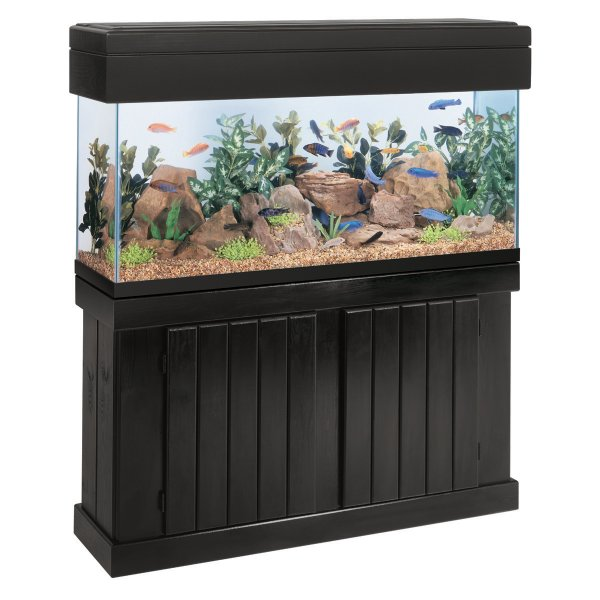 55 gallon fish tank canopy aquarium fish forum threads for 55 gal fish tank stand