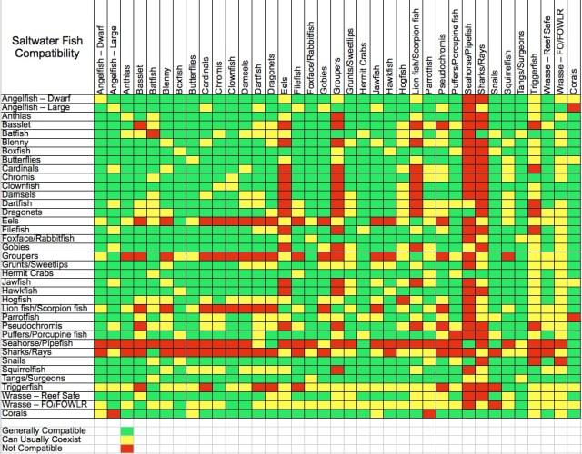 saltwater aquarium fish compatibility chart