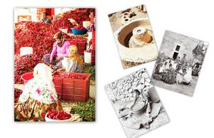 الطعام في المتوسط بين «التراتبية الاجتماعية» و«الفردانية»: مقاربات أنثروبولوجية  محمد تركي الربيعو