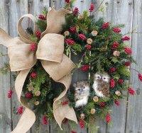 Front Door Wreath - Photos Wall and Door Tinfishclematis.Com