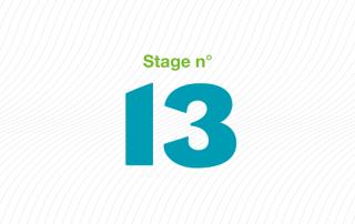 ARFI stage 13 épilepsie