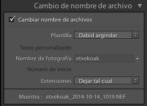 cambio de nombre de archivo
