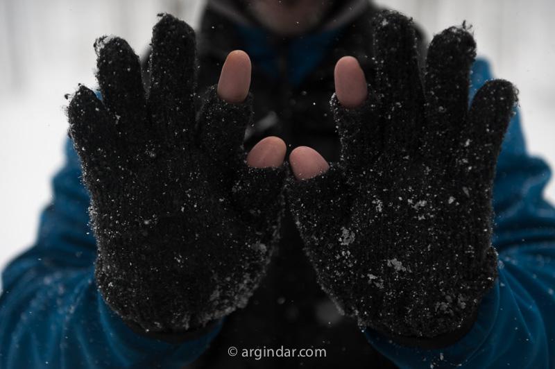 guantes sin dedos indice y gordo para fotografia-1