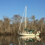Our Christmas anchorage in an oxbow off the ICW, deep in a cyprus swamp was one of our favourites...