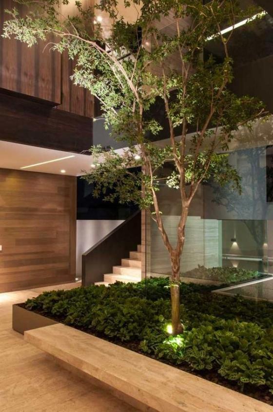 jardines-interiores8