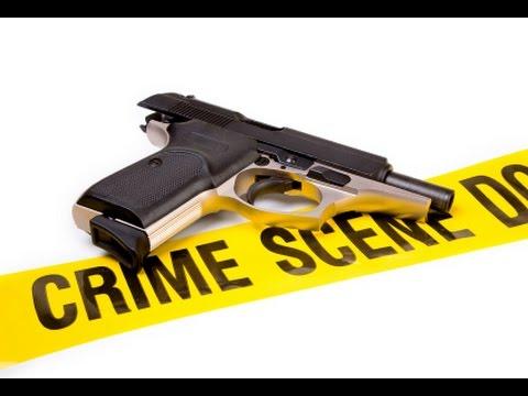 more guns less crime pdf
