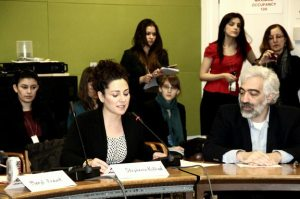 043 300x199 Panel at UN Explores Women's Empowerment and Sustainability in Armenia