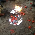 Protesters burned pictures of Safarov, and chucked tomatoes at the Hungarian embassy
