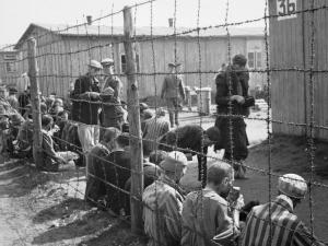 The_Liberation_of_Bergen-belsen_Concentration_Camp,_April_1945_BU4006