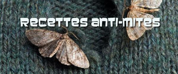 anti-mites-600-x-250