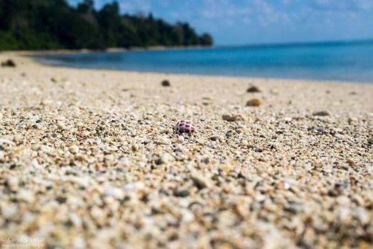 Blue Planet Beach