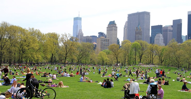 3021-Central_Park-Sheep_Meadow
