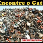 Encontre o Gato