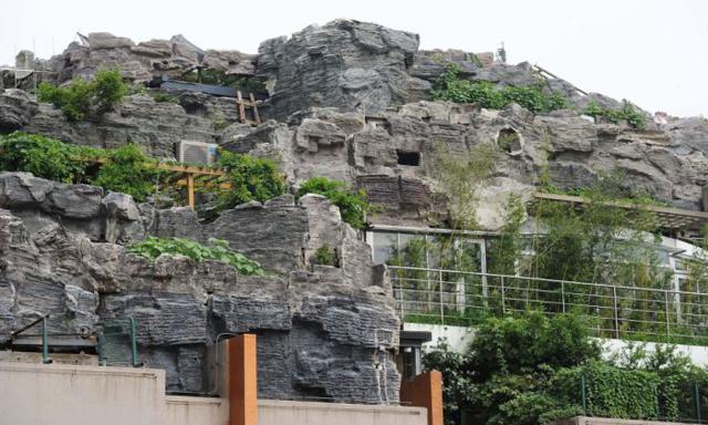 Chinês Constrói Montanha Particular No Topo De Prédio e Cria Briga Com Vizinhos