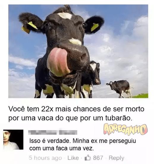 Aquele momento que você comprova que a sua ex era uma vaca