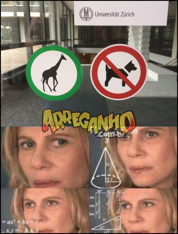 Cachorros não entram, mas girafas sim