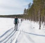 We got about 2km on the ski-track close to Hamptjärnsstugan.