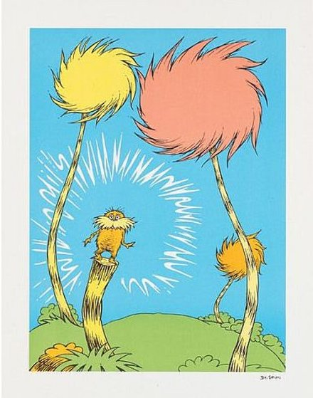 Lorax Book Cover by Dr Seuss