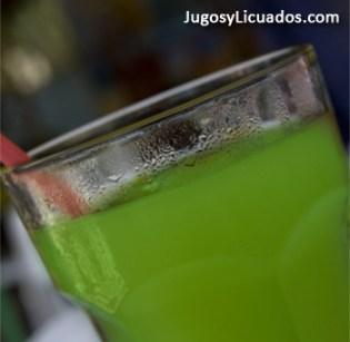 Jugo de Zanahoria, Lechuga y Apio para Úlceras Gástricas