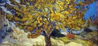 Il caff di notte di Van Gogh: analisi