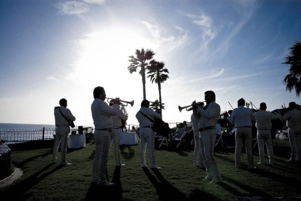 band with palm trees