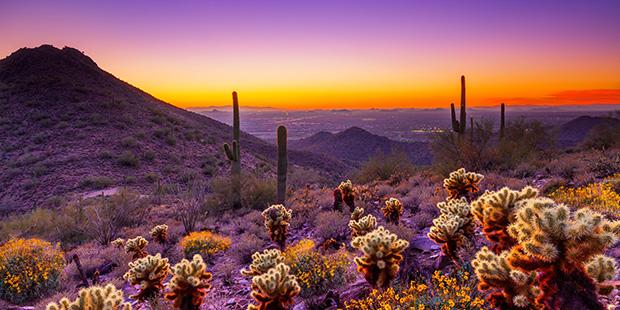 A sunset image of Scottsdale, AZ. (www.huffingtonpost.com)